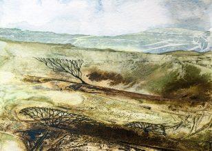 moorland-shrub