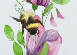Bee Sure